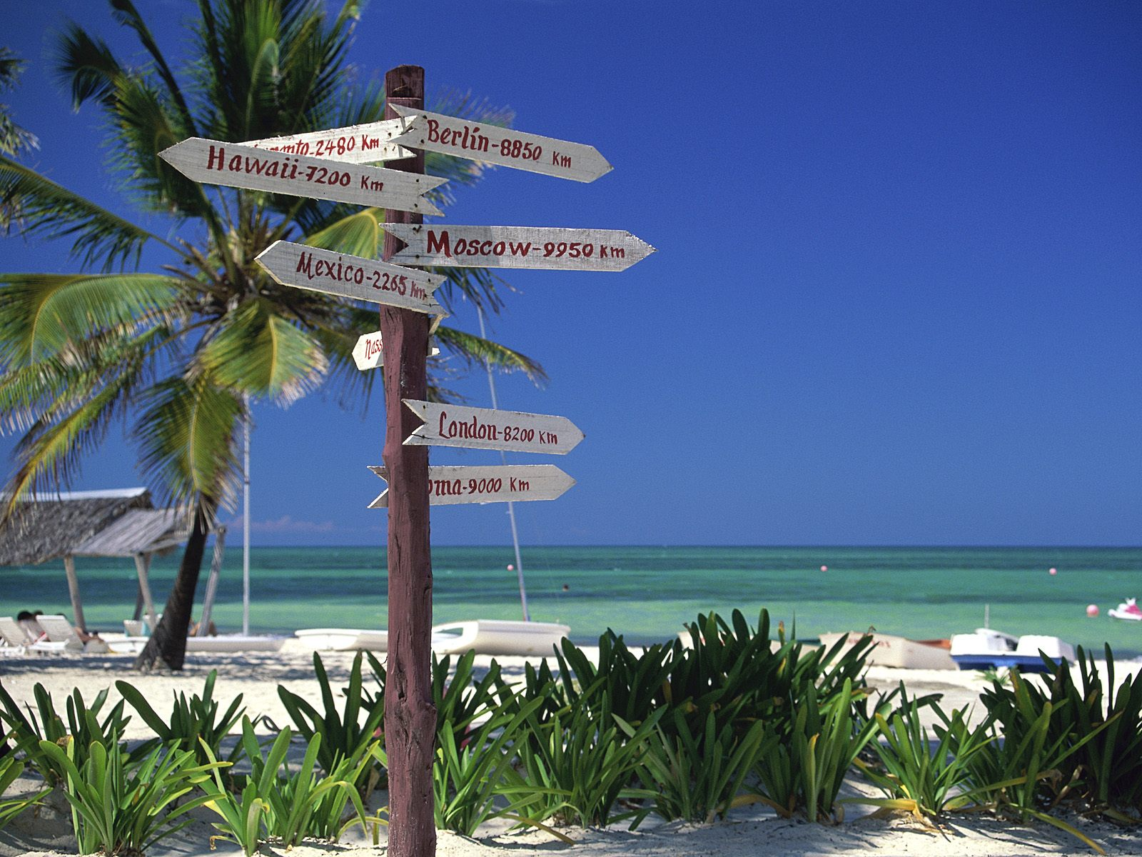 Staffetta ai caraibi arriva royal caribbean msc divina for Piani di casa dei caraibi