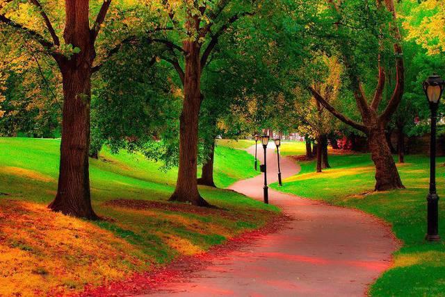 autunno-a-central-park