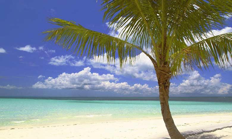 crociera alla bahamas