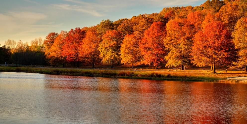 crociere d'autunno msc costa